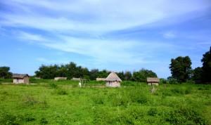 Village au Tchad